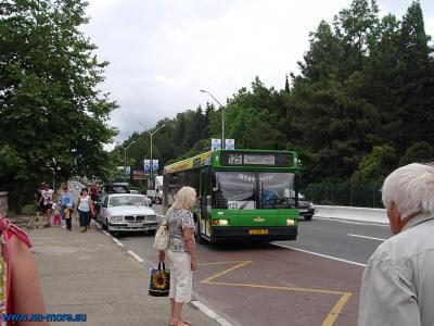 125 автобус следует от вокзалов Сочи в Адлер.
