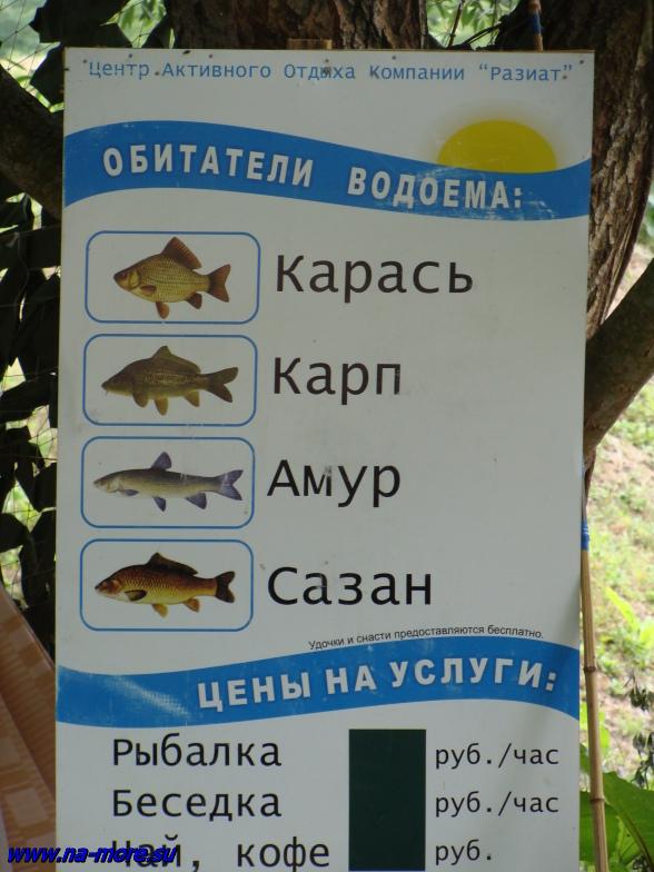 Предложения на вылов рыбы на базе отдыха около озера Сукко