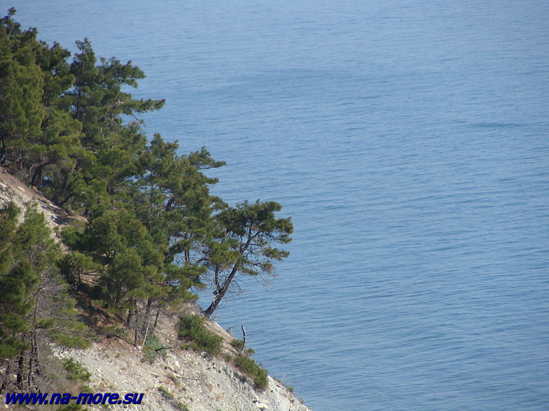 Чёрное море. Обрывистый берег в Кабардинке.