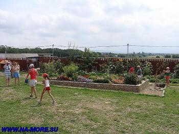 Страусиная ферма рядом с Анапой