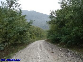 Старая военная дорога от Сухумского шоссе вдоль реки Жане