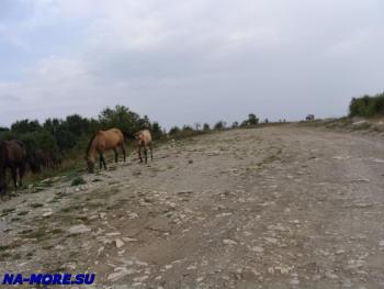 Горная дорога в горах Западного Кавказа