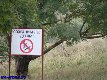 Не курите в лесу