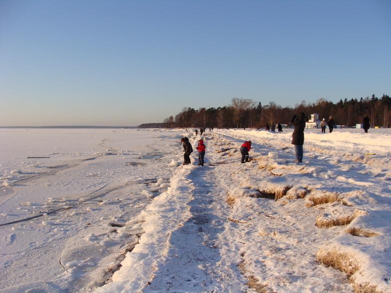 Зима на берегу Финского залива в Зеленогорске