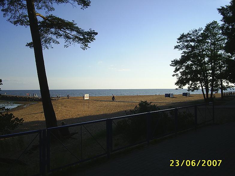 Берег Финского залива в районе Ушково-Приветинское
