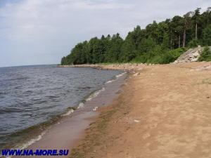 Берег Финского залива.