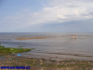Берег Финского залива в Сестрорецке.