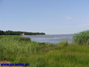 Финский залив в Сестрорецке