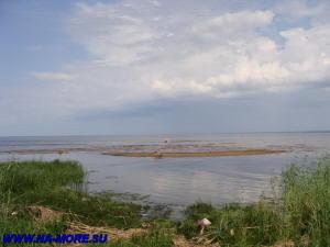 Пляж Дубковский в Сестрорецке