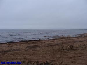 Финский залив в Сестрорецке поздней осенью