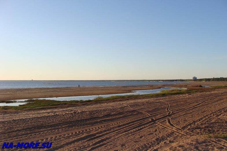 Пляж в Сестрорецка