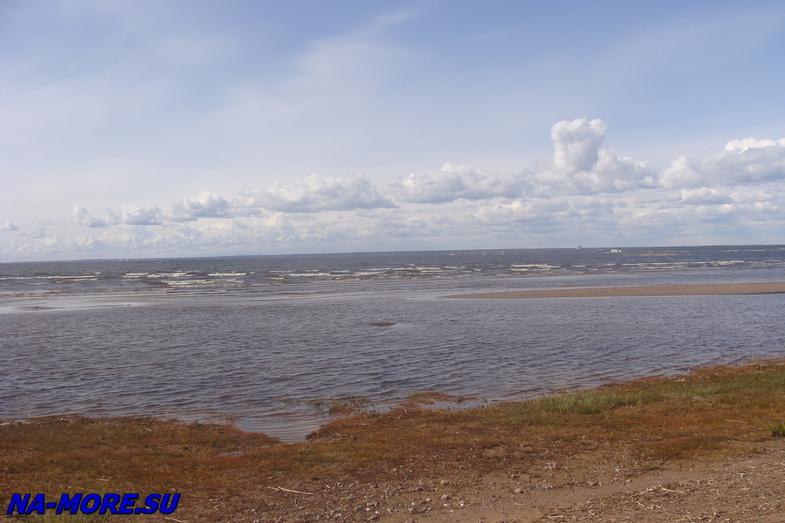 Пляж в Сестрорецке в начале мая