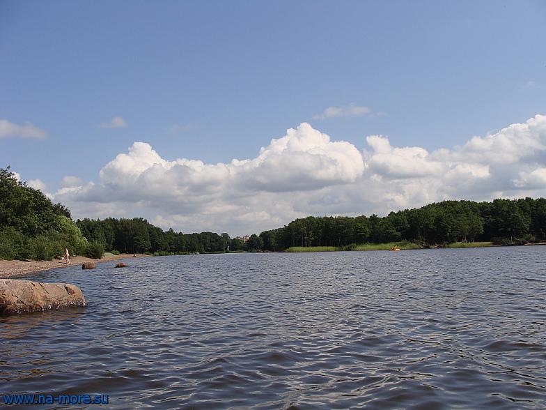 Водосливной канал идущий к озеру Разлив. Сестрорецк. Финский залив.