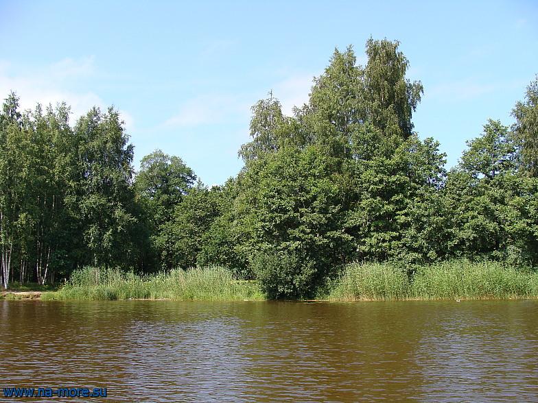 Около лодочной станции в парке Дубки в Сестрорецке.