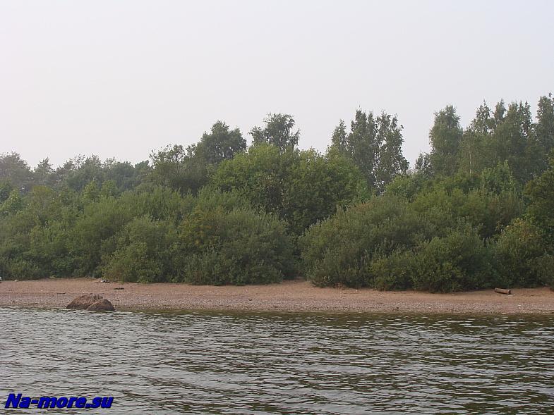 Пляж на берегу водосливного канала в Сестрорецке.
