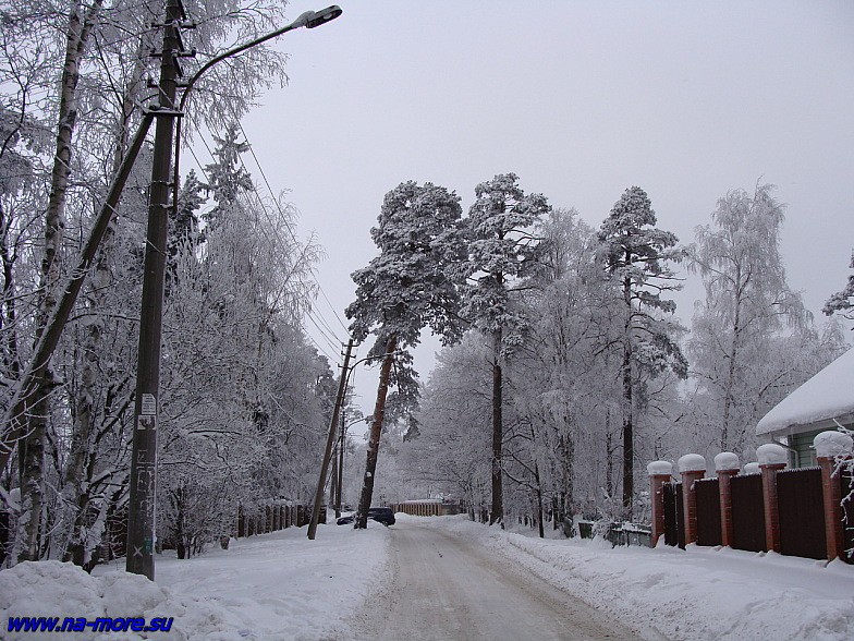 На зимней улице Сестрорецка.