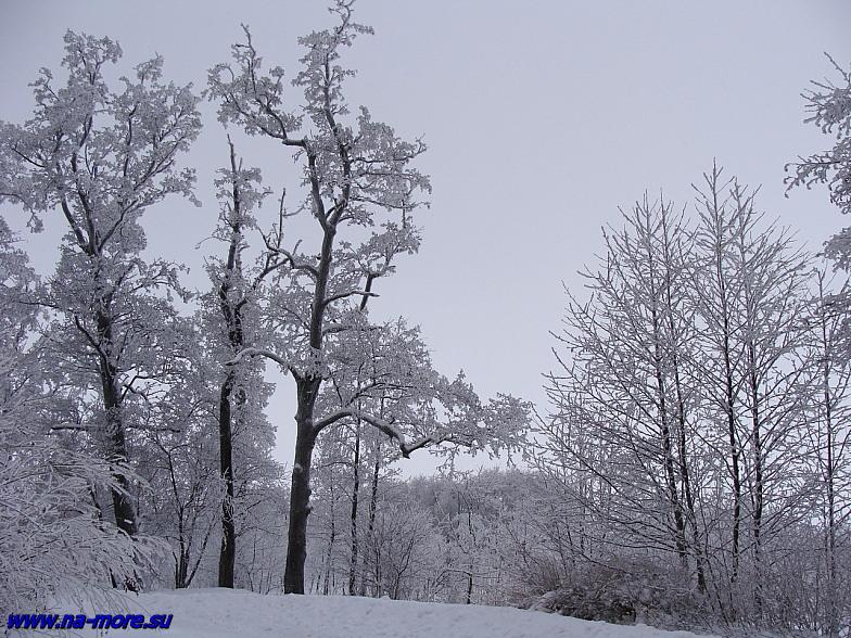 Зима на берегу Финского залива в Сестрорецке