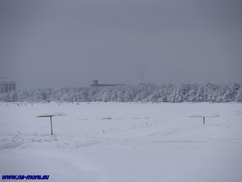 Пляж под снегом на берегу Финского залива в Сестрорецке.