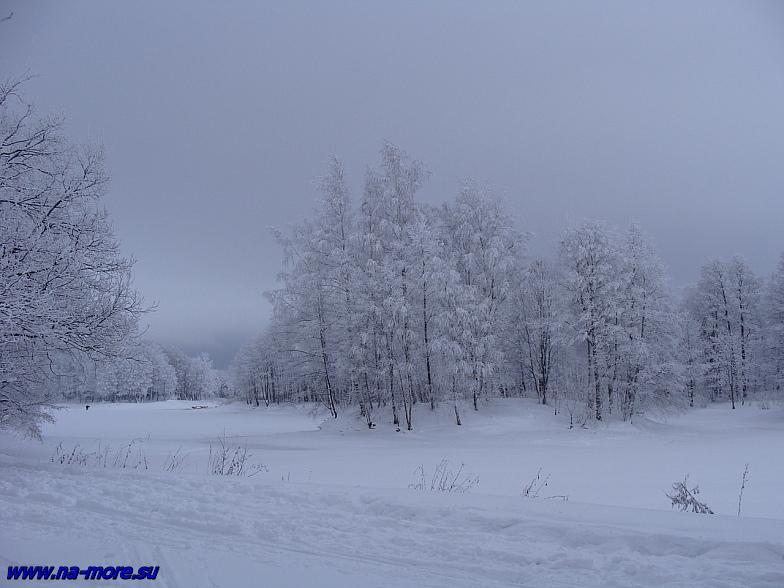 Сестрорецк. Парк Дубки зимой. Островок.