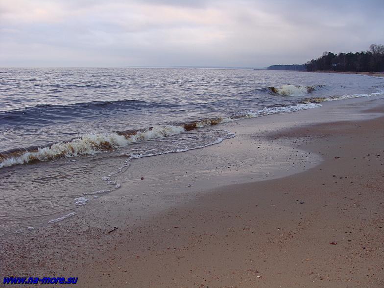 Берег Финского залива на пляже Зеленогорска.