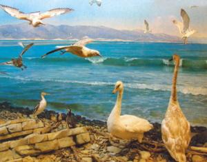 Диорама побережья в Новороссийском историческом музее