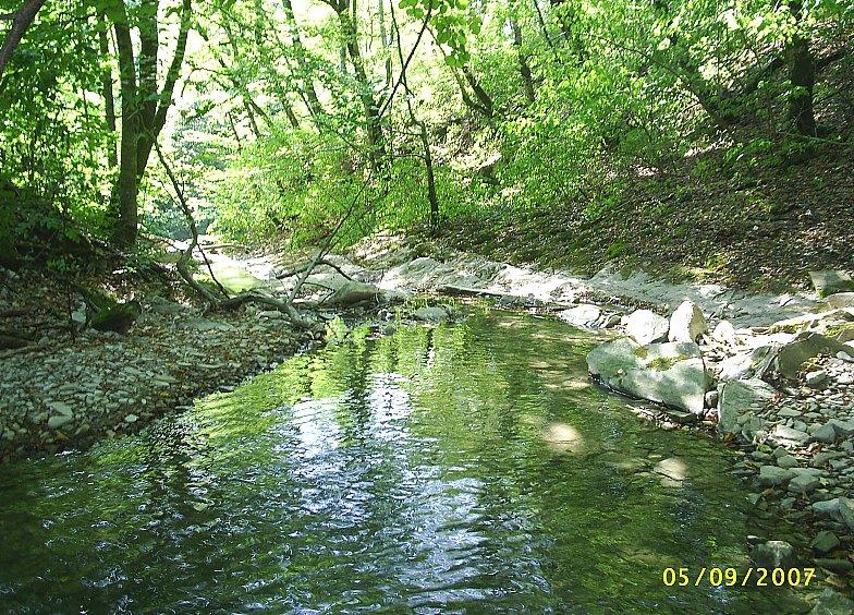 В горах Кавказа. Река Жане.