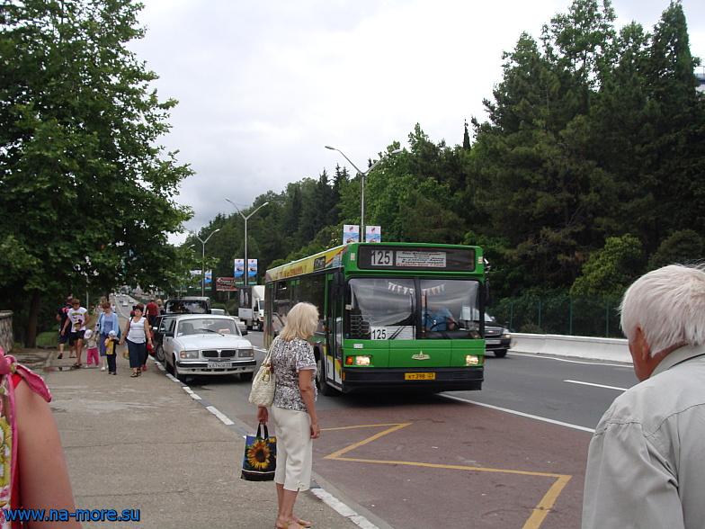 Улица Ленина в Адлере. Автобус 125 маршрута следует до Сочи.