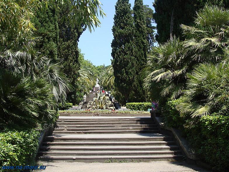 Главная лестница в Дендрарии Сочи.