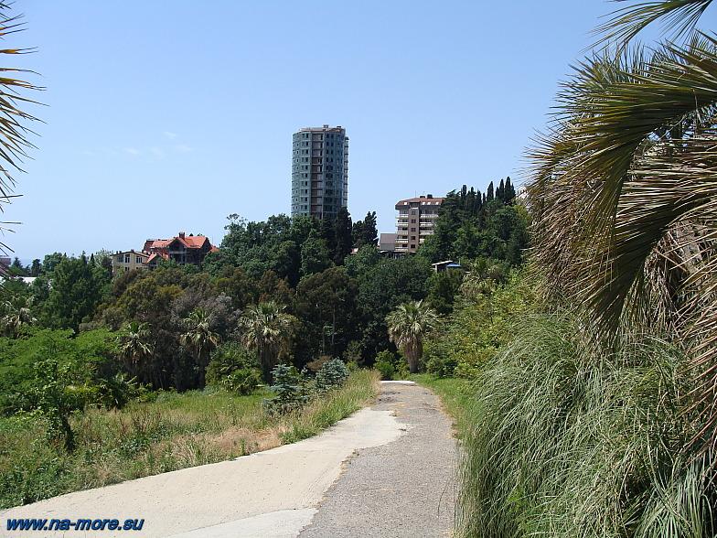 В Дендрарии Сочи. С верхней части парка открываются высотные дома города.