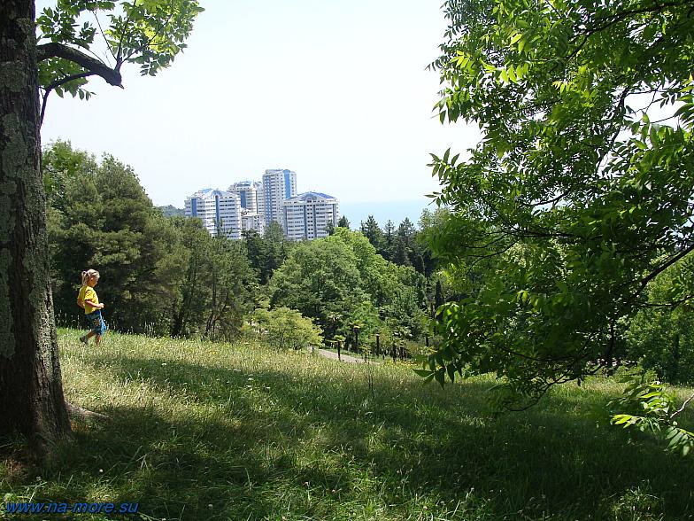 В Дендрарии Сочи. С верхней части парка открывается вид на новостройки города.