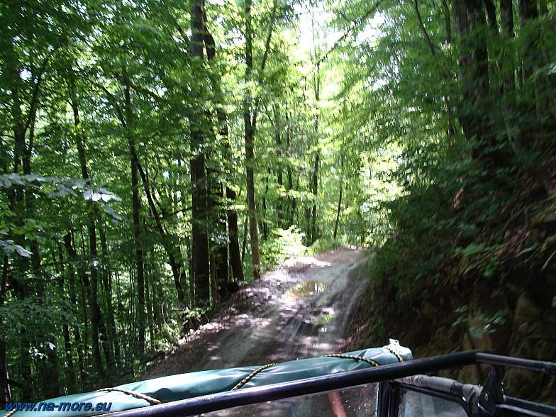 В зарослях идёт горная кавказская дорога.