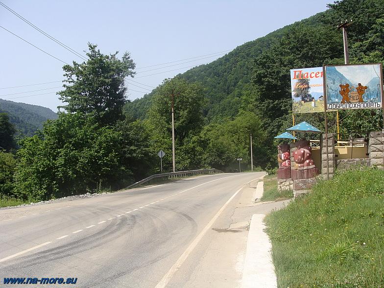 Краснополянское шоссе около пасеки.