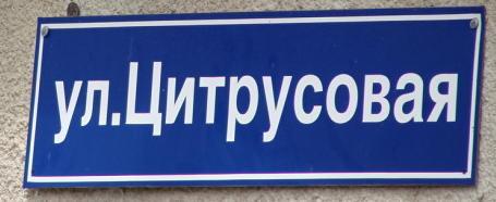 Табличка  - ул.Цитрусовая