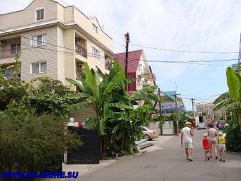 В курортном городке Адлера. Ул.Просвещения.