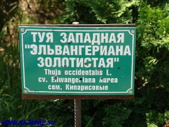 Табличка сочинского дендрария