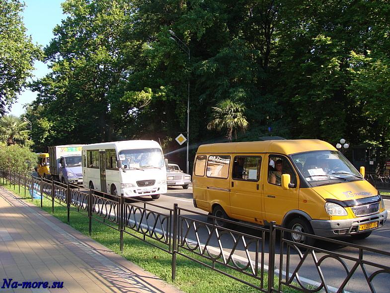 Плотное движение по Курортному проспекту Сочи