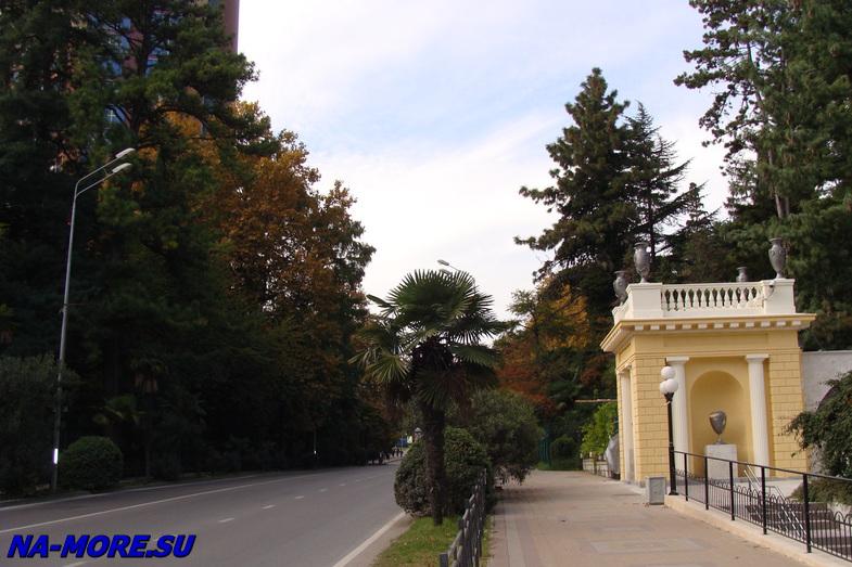 Дендрарий в Сочи на Курортном проспекте