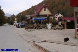 посёлок Медвежий угол на реке Чвижепсе