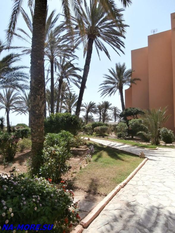 Тунис.  Отель El Ksar 4*. На пляже.